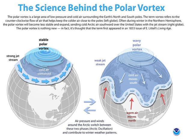 The Science Behind Polar Vortex .png